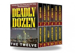 Guest Post: The Twelve Talk Thrillers, Indie Publishing and Facebook